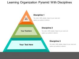 Learning Organization Pyramid With Disciplines Ppt Sample