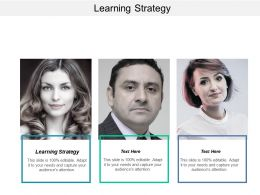 Learning Strategy Ppt Powerpoint Presentation Inspiration Example Introduction Cpb