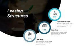 Leasing Structures Ppt Powerpoint Presentation Icon Deck Cpb
