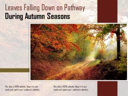 Leaves Falling Down On Pathway During Autumn Seasons