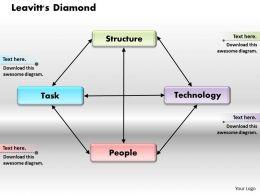 Leavitts Diamond Powerpoint Presentation Slide Template