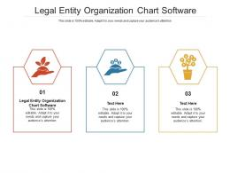 Legal Entity Organization Chart Software Ppt Powerpoint Presentation Gallery Cpb