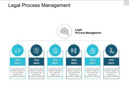 Legal Process Management Ppt Powerpoint Presentation Gallery Graphics Template Cpb