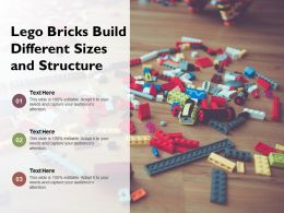 Lego Bricks Build Different Sizes And Structure