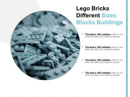 Lego Bricks Different Sizes Blocks Buildings
