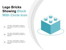 Lego Bricks Showing Block With Circle Icon
