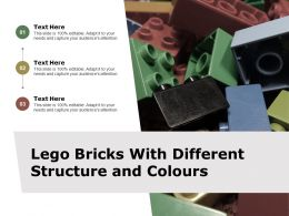 Lego Bricks With Different Structure And Colours
