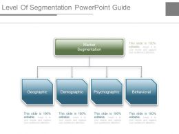 Level Of Segmentation Powerpoint Guide