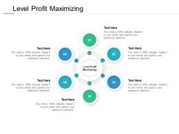 Level Profit Maximizing Ppt Powerpoint Presentation File Diagrams Cpb