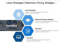 Level Strategies Determine Pricing Strategies Designing Organization Culture Cpb