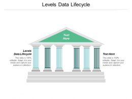 Levels Data Lifecycle Ppt Powerpoint Presentation File Slide Download Cpb