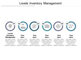 Levels Inventory Management Ppt Powerpoint Presentation File Skills Cpb