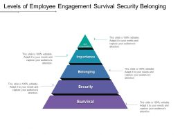 Levels Of Employee Engagement Survival Security Belonging