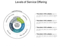 Levels Of Service Offering Example Of Ppt Presentation
