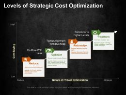 Levels Of Strategic Cost Optimization Ppt Summary Gridlines