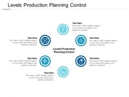Levels Production Planning Control Ppt Powerpoint Presentation Inspiration Cpb