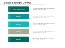 Levels Strategic Control Ppt Powerpoint Presentation Slides Example Topics Cpb