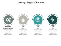 Leverage Digital Channels Ppt Powerpoint Presentation Ideas Display Cpb