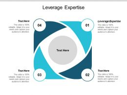 Leverage Expertise Ppt Powerpoint Presentation Summary Shapes Cpb