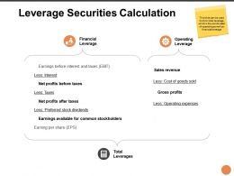 Leverage Securities Calculation Ppt Powerpoint Presentation Icon