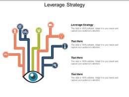 Leverage Strategy Ppt Powerpoint Presentation File Clipart Images Cpb