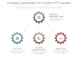 Leveraging Opportunities For Innovation Ppt Examples