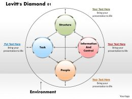 Levitts Diamond 01 Powerpoint Presentation Slide Template