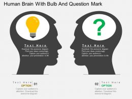 lh Human Brain With Bulb And Question Mark Flat Powerpoint Design