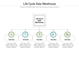 Life Cycle Data Warehouse Ppt Powerpoint Presentation File Information Cpb