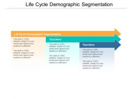 Life Cycle Demographic Segmentation Ppt Powerpoint Presentation Layouts Files Cpb