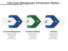 Life Cycle Management Introduction Market Advertising Product Testing