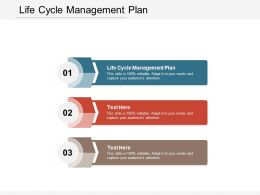 Life Cycle Management Plan Ppt Powerpoint Presentation Summary Styles Cpb