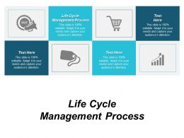 Life Cycle Management Process Ppt Powerpoint Presentation Layouts Themes Cpb