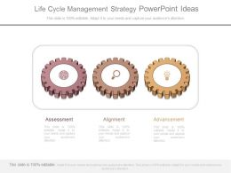 Life Cycle Management Strategy Powerpoint Ideas