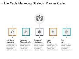 Life Cycle Marketing Strategic Planner Cycle Emotional Intelligence Cpb