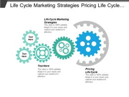 Life Cycle Marketing Strategies Pricing Life Cycle Ansoff Strategy Cpb