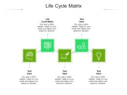 Life Cycle Matrix Ppt Powerpoint Presentation Model Ideas Cpb