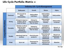 life_cycle_portfolio_matrix_01_powerpoint_presentation_slide_template_Slide01