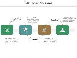 Life Cycle Processes Ppt Powerpoint Presentation Layouts Ideas Cpb