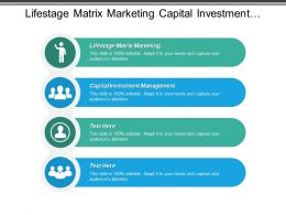 Life Stage Matrix Marketing Capital Investment Management Capital Investment Cpb
