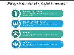 life_stage_matrix_marketing_capital_investment_management_capital_investment_cpb_Slide01