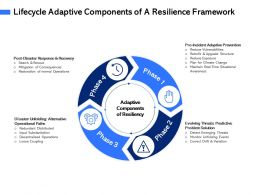 Lifecycle Adaptive Components Of A Resilience Framework Drift Ppt Powerpoint Presentation File