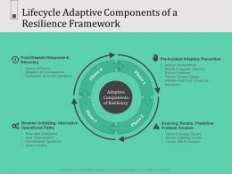 Lifecycle Adaptive Components Of A Resilience Framework N596 Powerpoint Presentation Graphics