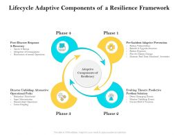 Lifecycle Adaptive Components Of A Resilience Framework Ppt Download