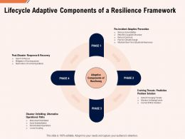 Lifecycle Adaptive Components Of A Resilience Framework Ppt Powerpoint File Elements