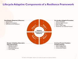 Lifecycle Adaptive Components Of A Resilience Framework Upgrade Ppt Powerpoint Presentation Slides Display