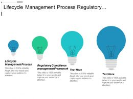 Lifecycle Management Process Regulatory Compliance Management Framework Procurement Operating Cpb