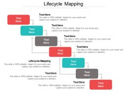 Lifecycle Mapping Ppt Powerpoint Presentation File Grid Cpb