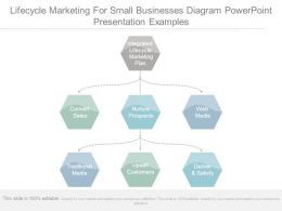 Lifecycle Marketing For Small Businesses Diagram Powerpoint Presentation Examples