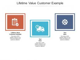 Lifetime Value Customer Example Ppt Powerpoint Presentation Outline Graphics Tutorials Cpb